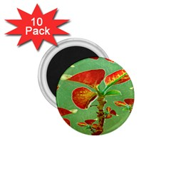 Tropical Floral Print 1 75  Magnets (10 Pack)