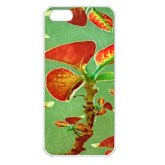 Tropical Floral Print Apple Iphone 5 Seamless Case (white)
