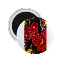 Red Orchids 2 25  Magnets