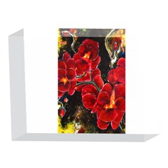 REd Orchids 5 x 7  Acrylic Photo Blocks