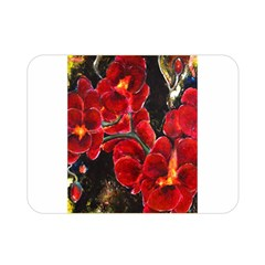 REd Orchids Double Sided Flano Blanket (Mini)