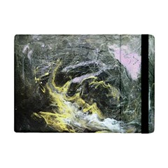 Black Ice Apple Ipad Mini Flip Case