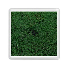 Green Moss Memory Card Reader (Square)