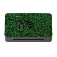 Green Moss Memory Card Reader with CF