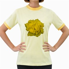 Isolated Yellow Rose Photo Women s Fitted Ringer T-Shirts