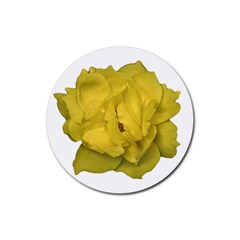 Isolated Yellow Rose Photo Rubber Coaster (round)