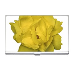 Isolated Yellow Rose Photo Business Card Holders