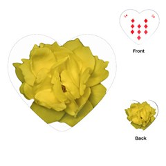 Isolated Yellow Rose Photo Playing Cards (Heart)