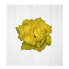 Isolated Yellow Rose Photo Shower Curtain 66  X 72  (large)