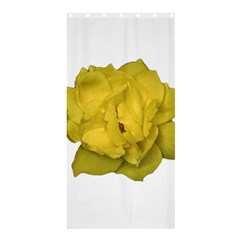 Isolated Yellow Rose Photo Shower Curtain 36  X 72  (stall)