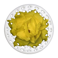 Isolated Yellow Rose Photo Round Filigree Ornament (2side)