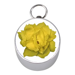 Isolated Yellow Rose Photo Mini Silver Compasses