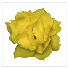 Isolated Yellow Rose Photo Large Satin Scarf (Square)