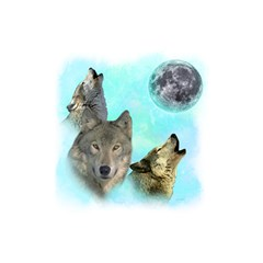 Wolves Shiney Grim Moon 3000 Shower Curtain 48  X 72  (small)