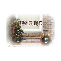 Black Ghoulish Pumpkins In White Matte Magic Photo Cubes