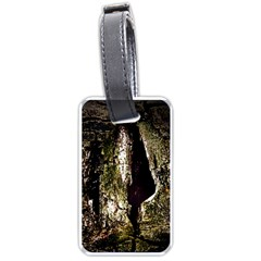 A Deeper Look Luggage Tags (two Sides)