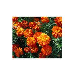 Tagetes 5.5  x 8.5  Notebooks