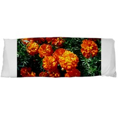 Tagetes Body Pillow Cases (Dakimakura)