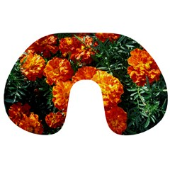 Tagetes Travel Neck Pillows