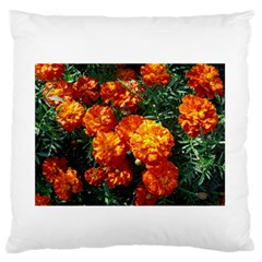 Tagetes Large Flano Cushion Cases (One Side)