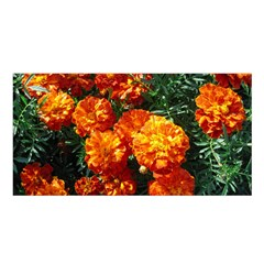 Tagetes Satin Shawl