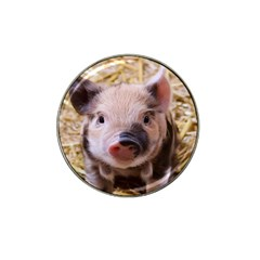 Sweet Piglet Hat Clip Ball Marker (10 Pack)