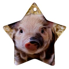 Sweet Piglet Star Ornament (two Sides)