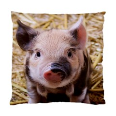 Sweet Piglet Standard Cushion Cases (two Sides)