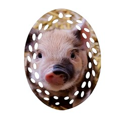 Sweet Piglet Ornament (Oval Filigree)