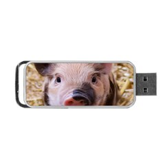 Sweet Piglet Portable Usb Flash (two Sides)