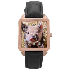 Sweet Piglet Rose Gold Watches
