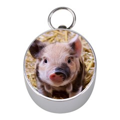 Sweet Piglet Mini Silver Compasses
