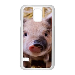 Sweet Piglet Samsung Galaxy S5 Case (white)