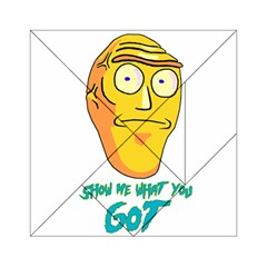 Show Me What You Got New Fresh Acrylic Tangram Puzzle (6  X 6 )