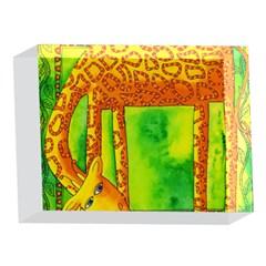 Patterned Giraffe  5 x 7  Acrylic Photo Blocks