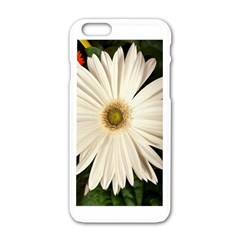 Flower Apple Iphone 6 White Enamel Case