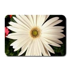 Daisyc Plate Mats
