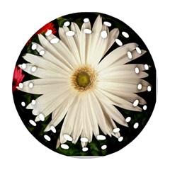 Daisyc Ornament (Round Filigree)