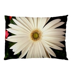 Daisyc Pillow Cases (two Sides)