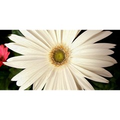 Daisyc You Are Invited 3d Greeting Card (8x4)