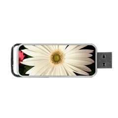 Daisyc Portable Usb Flash (two Sides)