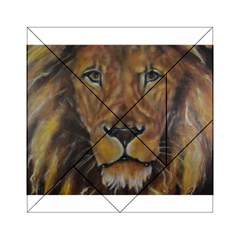Cecil The African Lion Acrylic Tangram Puzzle (6  x 6 )