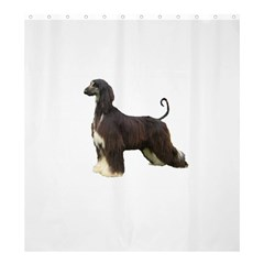 Afghan Hound Full Shower Curtain 66  x 72  (Large)