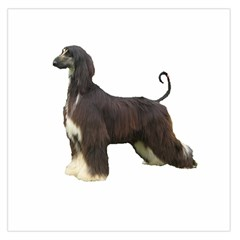 Afghan Hound Full Large Satin Scarf (Square)