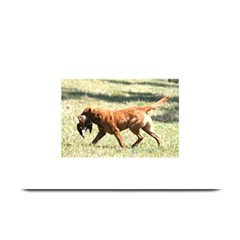 Chesapeake Bay Retriever Retrieving Plate Mats