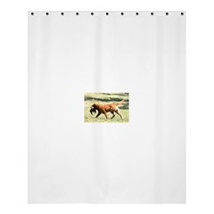 Chesapeake Bay Retriever Retrieving Shower Curtain 60  x 72  (Medium)