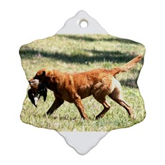 Chesapeake Bay Retriever Retrieving Ornament (Snowflake)