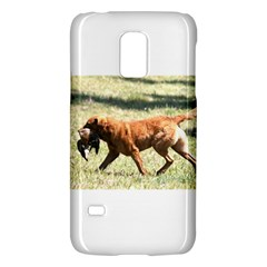 Chesapeake Bay Retriever Retrieving Galaxy S5 Mini