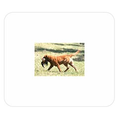 Chesapeake Bay Retriever Retrieving Double Sided Flano Blanket (Small)