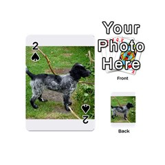 Black Roan English Cocker Spaniel Full 2 Playing Cards 54 (Mini)